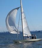 Яхта Динго